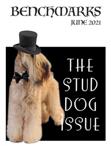 The Stud Dog Issue